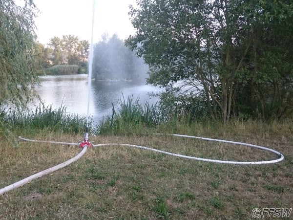 Wasserwerfer